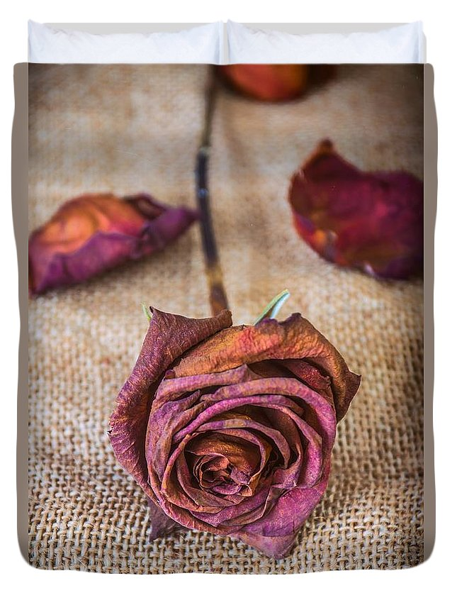 Melancholy Duvet Cover featuring the photograph Dead Rose by Carlos Caetano