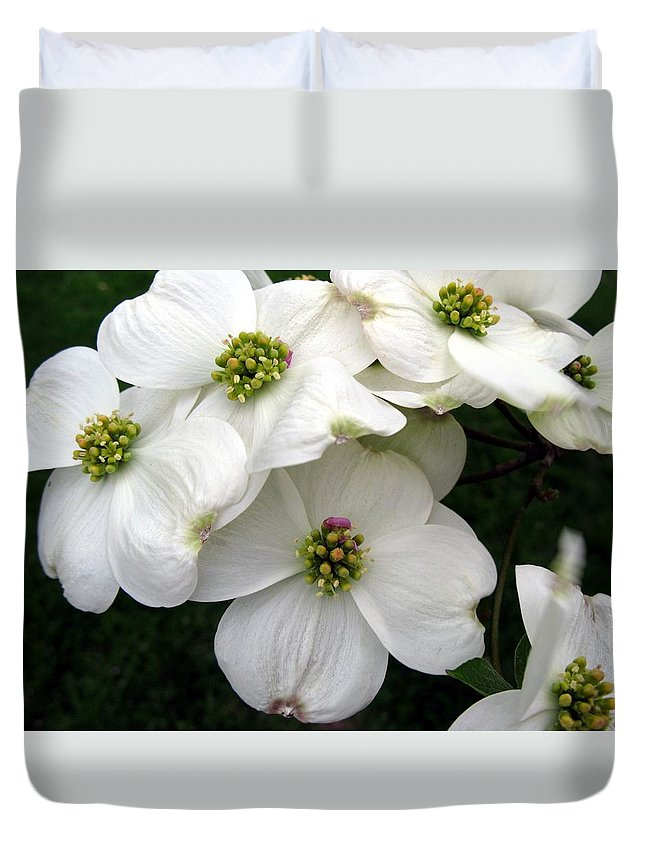 Dogwood Duvet Cover featuring the photograph Dogwood Branch by Carol Sweetwood