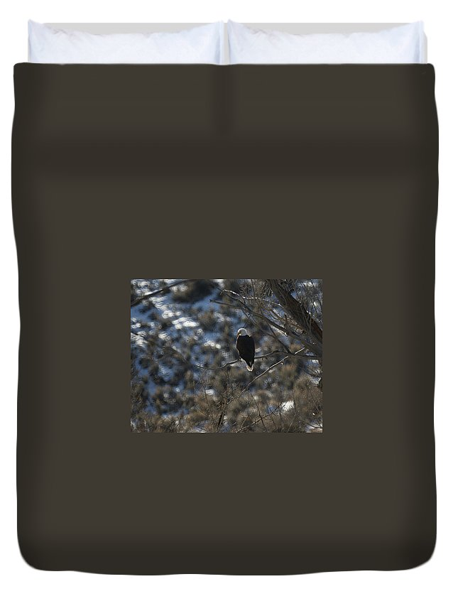 Animal Duvet Cover featuring the photograph Eagle In Tree by Ernie Echols