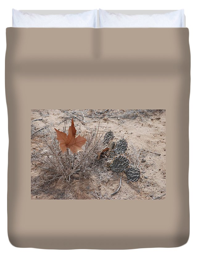 Desert Duvet Cover featuring the photograph East Meets West by Rob Hans