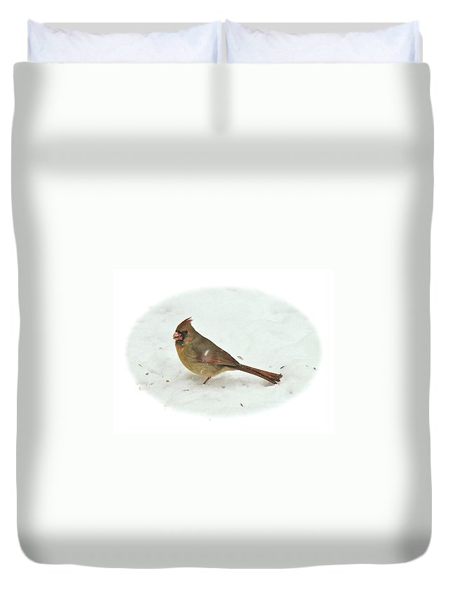 Although The Male Cardinal Is Handsome In His Red And Black Dress Duvet Cover featuring the photograph Eastern Cardinal - Cardinalis Cardinalis by Mother Nature