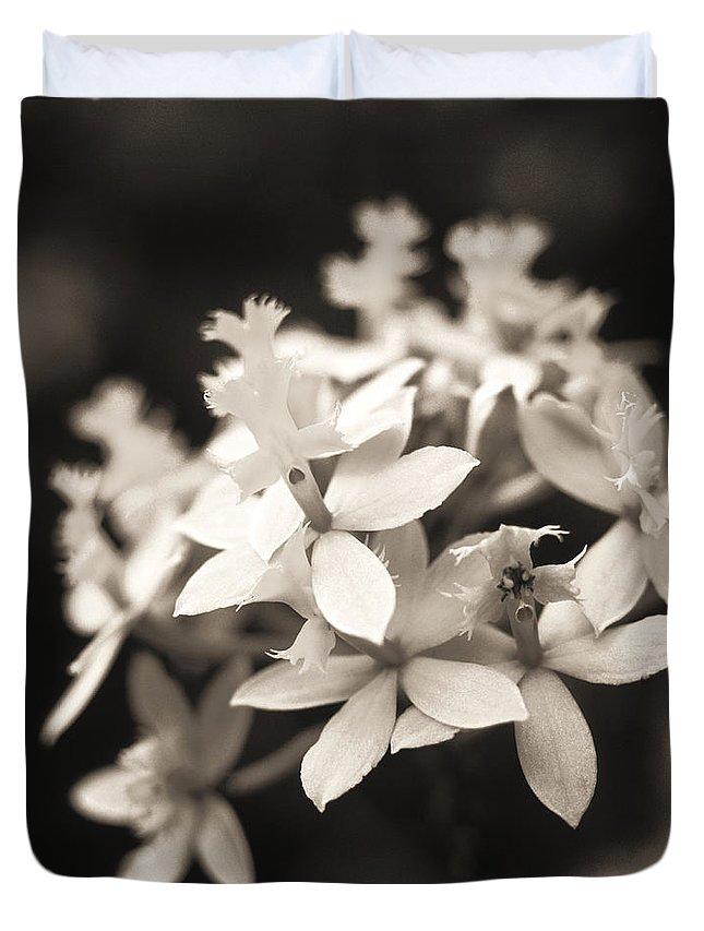 Allan Seiden Duvet Cover featuring the photograph Epidendrum Orchid by Allan Seiden - Printscapes