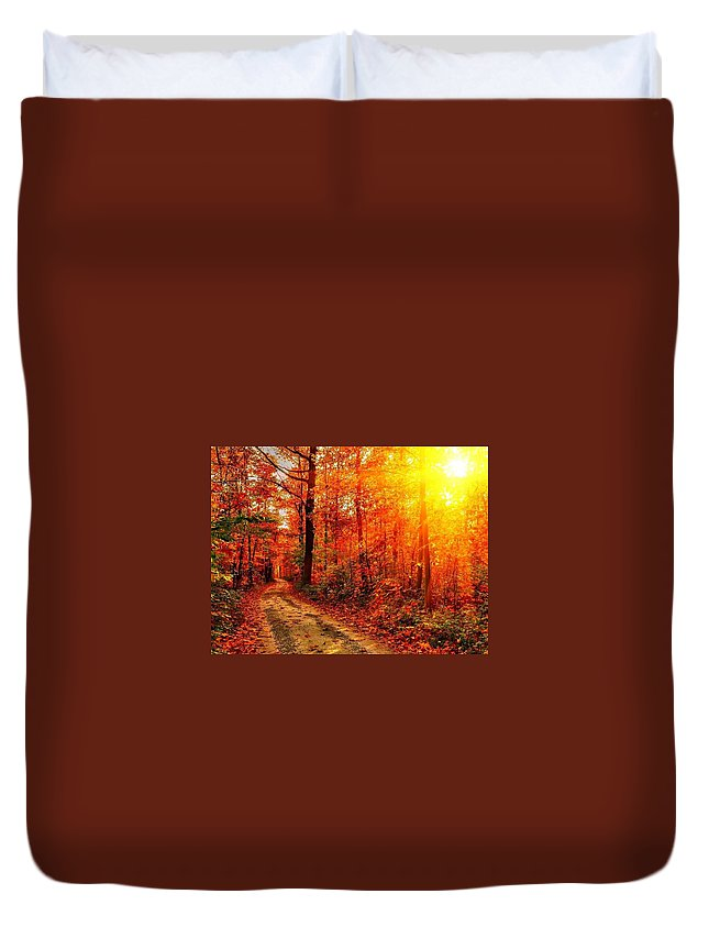 Fall Duvet Cover featuring the digital art Fall by Dorothy Binder