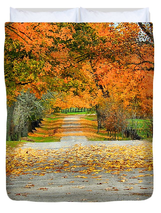 Fall Duvet Cover featuring the photograph Fall Road by Bob Welch