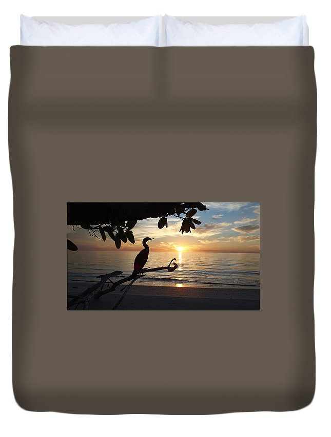 Beach Duvet Cover featuring the photograph Florida Sunset by Sharon Kotula