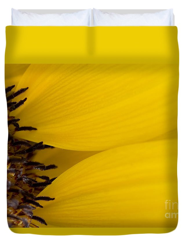 83-pfs0180 Duvet Cover featuring the photograph Flower Abstract by Ray Laskowitz - Printscapes