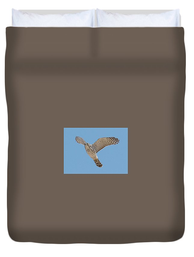 Hawk Duvet Cover featuring the photograph Flying Low by Judd Nathan