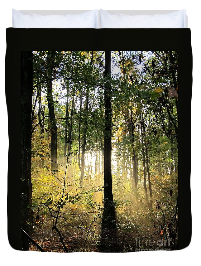Forest Light Trees Forest Sunrise Forest Sunsets Wood Shine Forest Silhouettes Tree Light Sunshine Bright Woodland Landscapes Forest Lightscapes Backlit Forest American Seasonal Forest Autumn Light Nature Prints Nature Photography Natural Science Silvculture Oldgrowth Forest Preservation American Landscapes Outdoors Maryland Landscapes Shining Trees Forest Glow Tree Glow Shining Arbor Arborial Illumination Arborist Sustainable Forestry Clean Renewable Energy Greenpeace Nature Conservancy Wilderness Preservation Special Places Scenic Drive Natural Beauty Creation Guiding Light Intelligent Design Colorful Trees Organic Forest Art Office Art Wall Art Interior Design Green Designers Duvet Cover featuring the photograph Forest Light by Joshua Bales