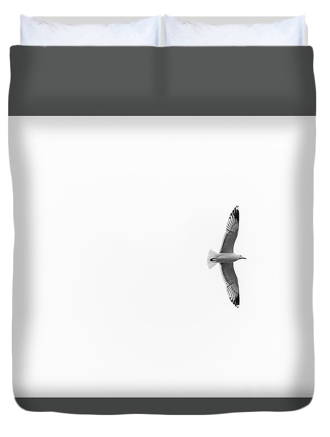 Seagull Duvet Cover featuring the photograph Freedom In The Sky by Konstantin Khanov