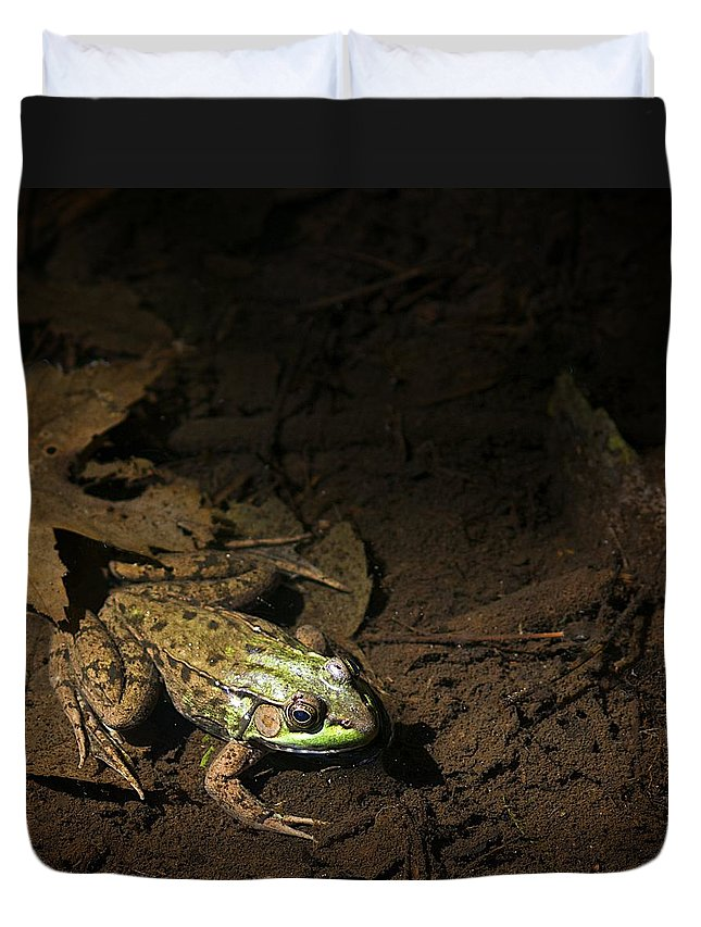 Frog Duvet Cover featuring the photograph Frog 4 by Robert Skuja