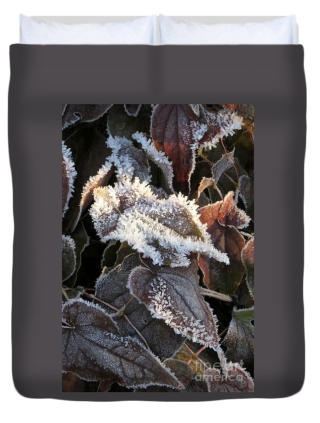 Leaves Duvet Cover featuring the photograph Frost-lined by Frank Townsley