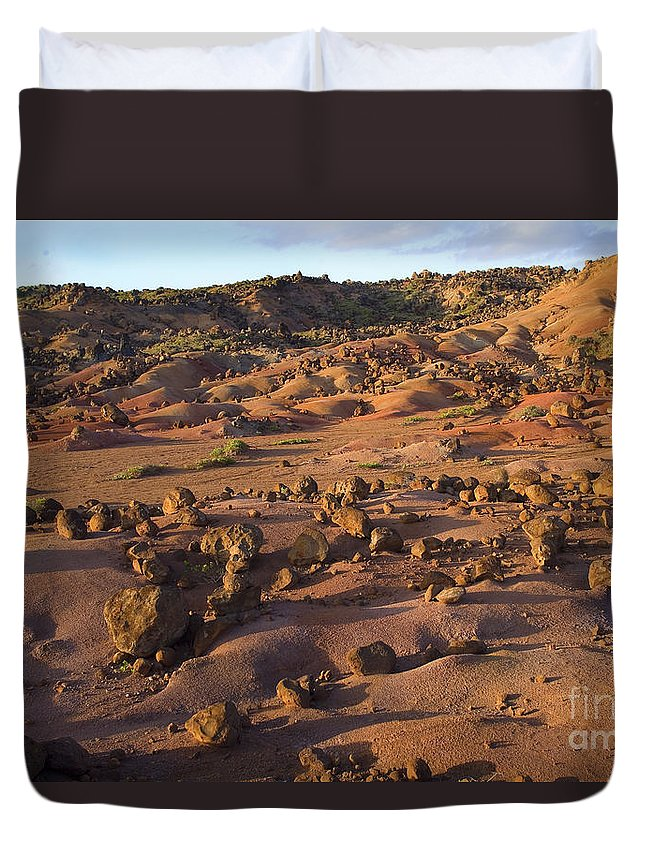 Afternoon Duvet Cover featuring the photograph Garden Of The Gods by Ron Dahlquist - Printscapes