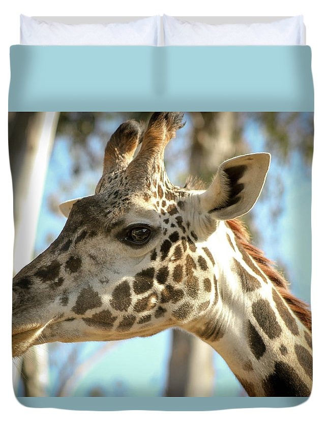 San Diego Zoo Duvet Cover featuring the photograph Giraffe by Nicole Badger