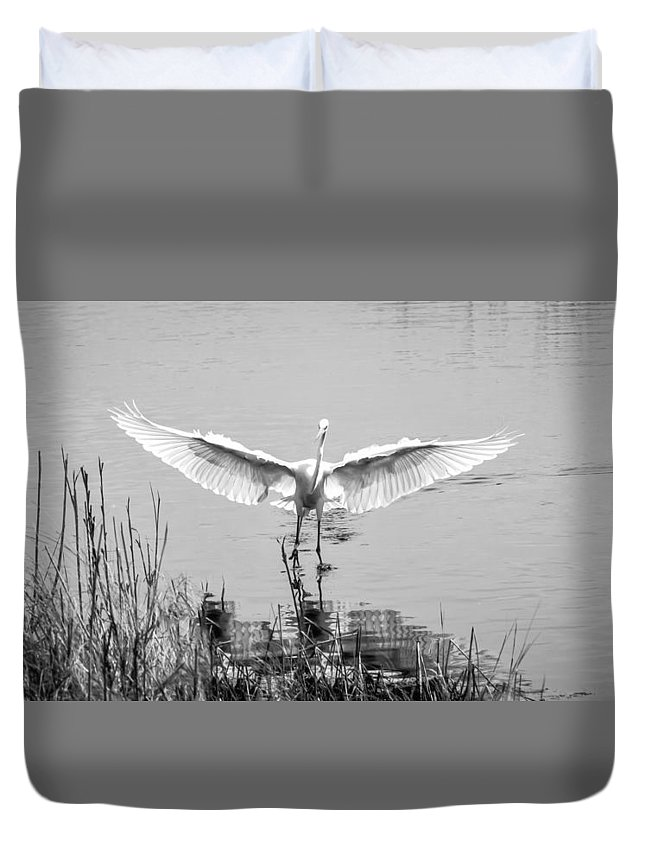 Bird Duvet Cover featuring the photograph Great White Egret by David Kay