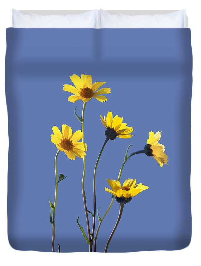 Daisy Duvet Cover featuring the digital art Happy Daisies II by Sharon Foster