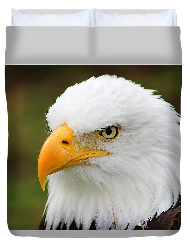 American Bald Eagle Duvet Cover featuring the photograph Head Of An American Bald Eagle by Robert Hamm