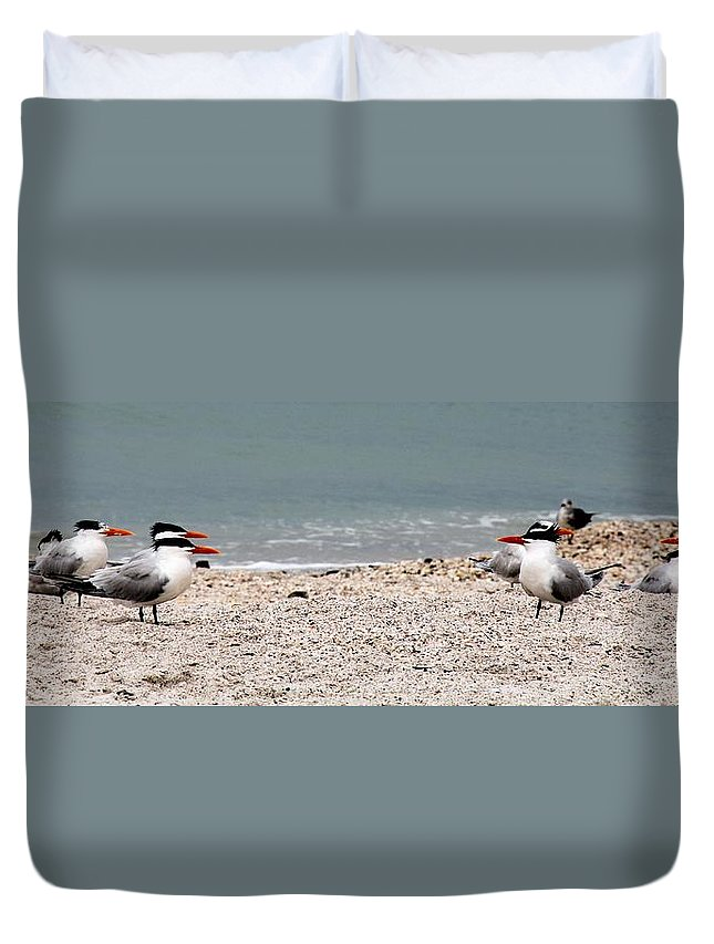 Hey You Talkin To Me Duvet Cover featuring the photograph Hey You Talkin To Me by Ed Smith