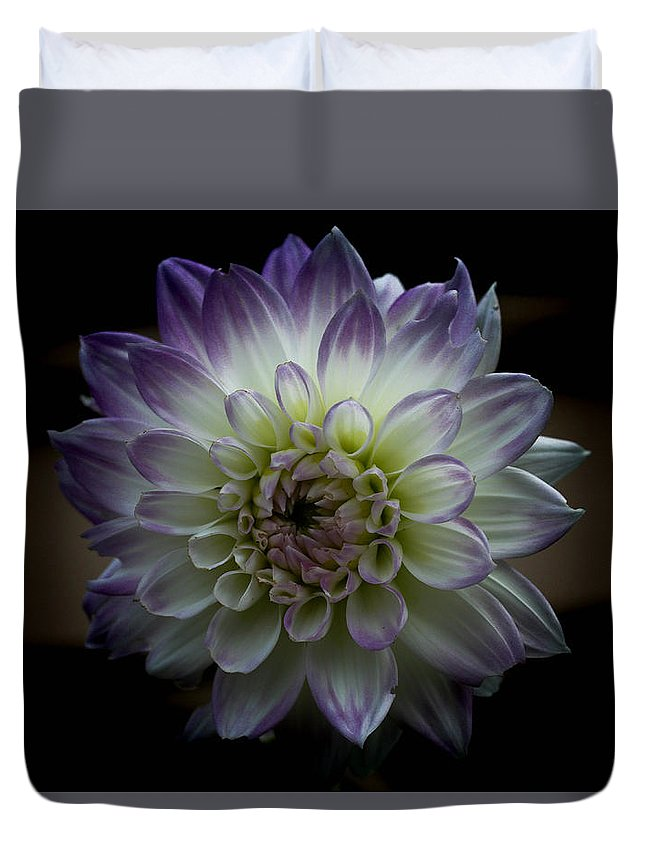 Flower Duvet Cover featuring the photograph Hint Of Lilac by Linda Foakes