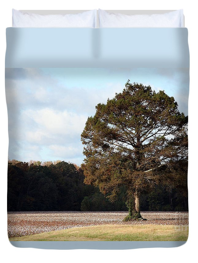 Trees Duvet Cover featuring the photograph Home by Amanda Barcon