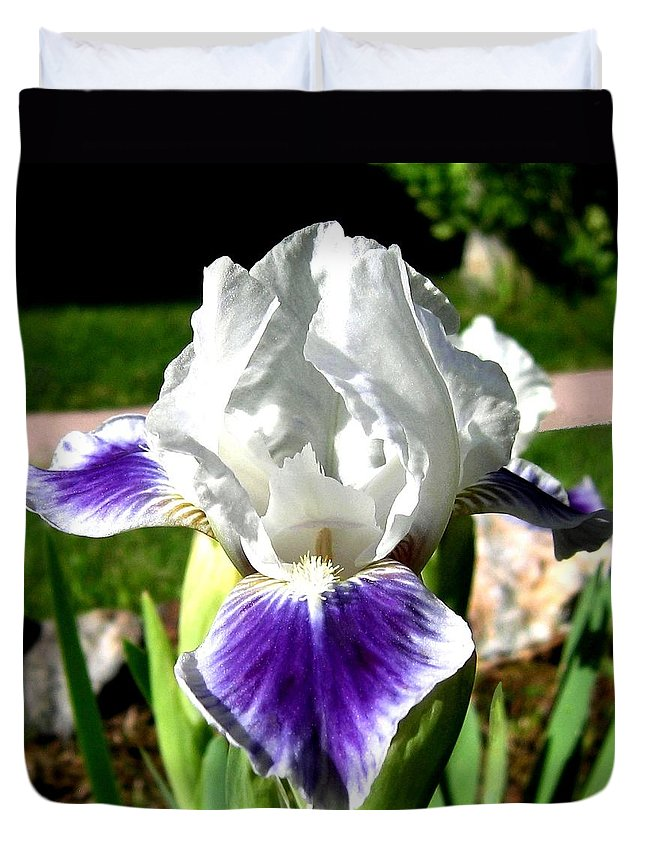 Iris Duvet Cover featuring the photograph Iris Elegance by Will Borden