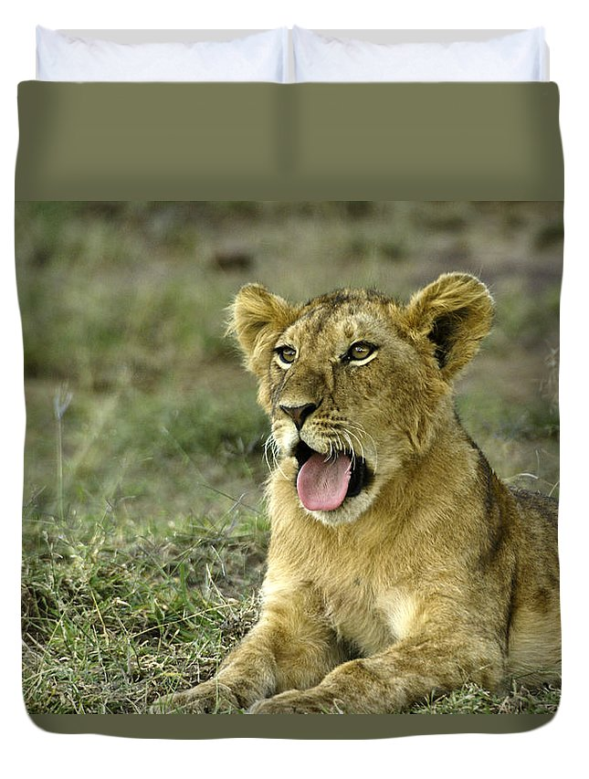 Africa Duvet Cover featuring the photograph It's Been A Long Day by Michele Burgess