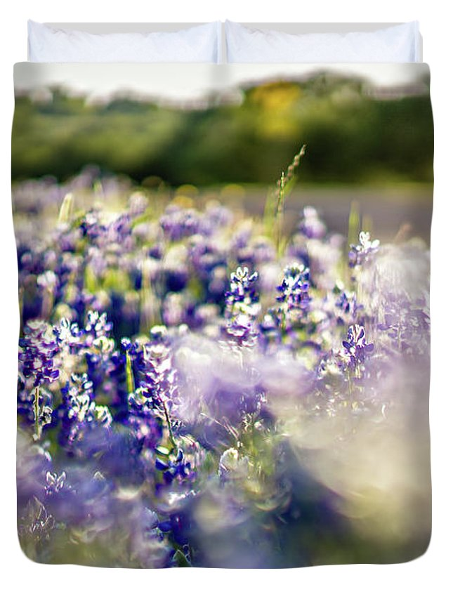 Field Duvet Cover featuring the photograph Lavender Purple Flower Blooming On Side Road In Texas At Sunset by Alex Grichenko
