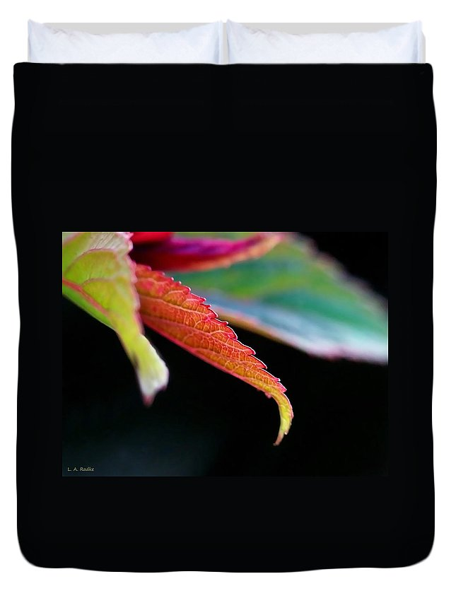 Macro Duvet Cover featuring the photograph Leaf Study Iv by Lauren Radke