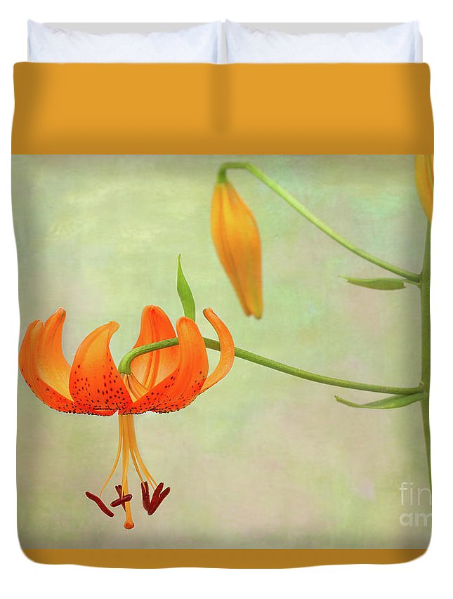 Lily Duvet Cover featuring the photograph Lilium Pardalinum by Marilyn Cornwell