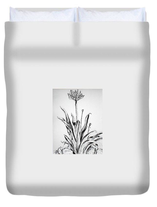 Drawing Duvet Cover featuring the drawing Lily Of The Nile by Vicki Housel