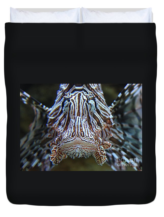 Fish Duvet Cover featuring the photograph Lion Fish by Carol Groenen