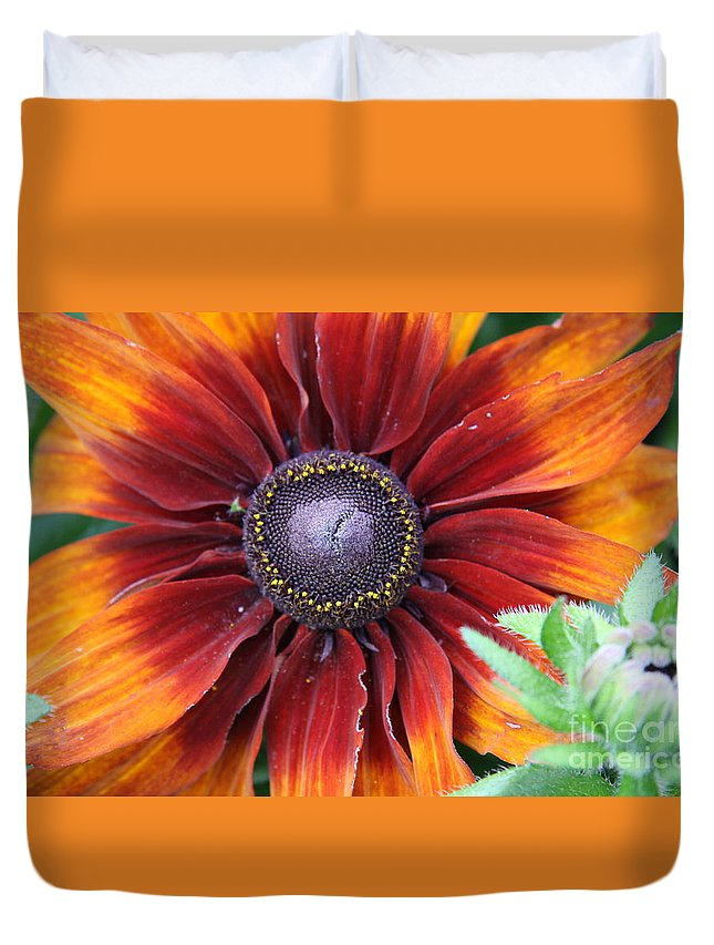 Sunflower Duvet Cover featuring the photograph Little Sunshine by Christiane Schulze Art And Photography