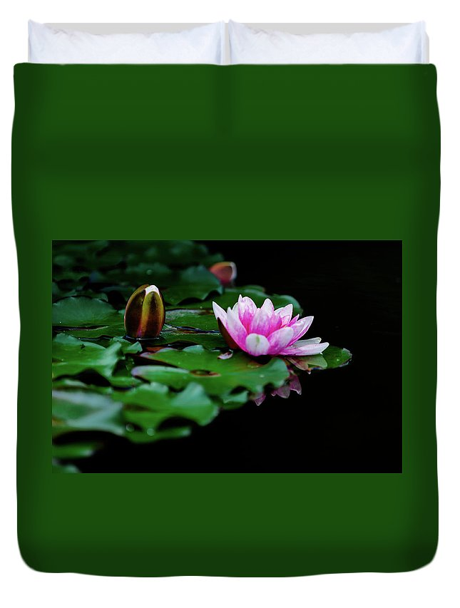 Lotus Flowers Duvet Cover featuring the photograph Lotus Flowers by Hristo Shanov
