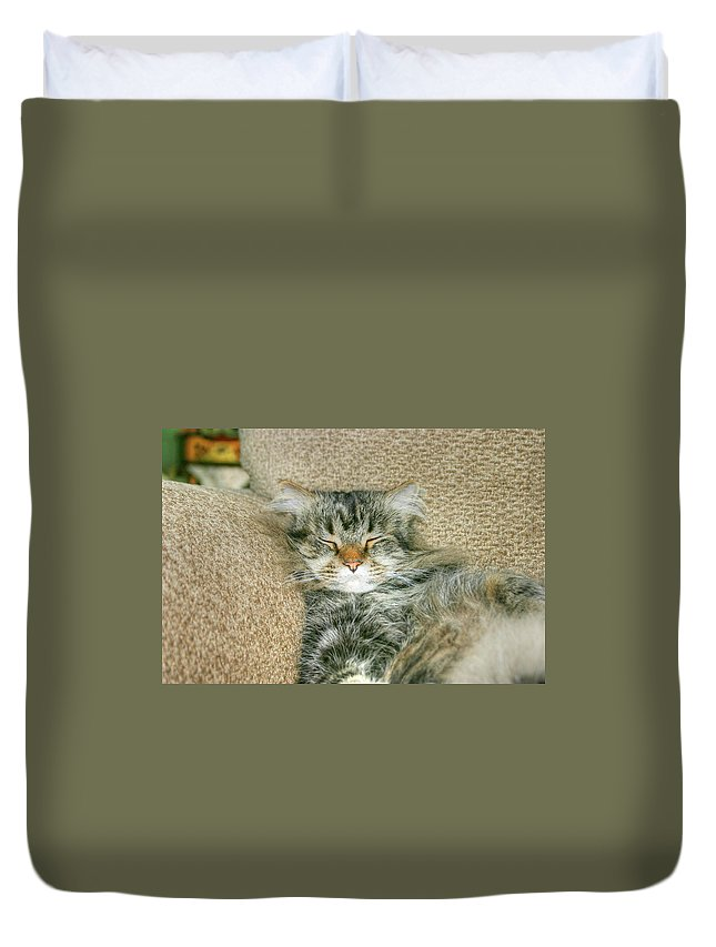 Maine Coon Duvet Cover featuring the photograph Maine Coon by Michael Munster