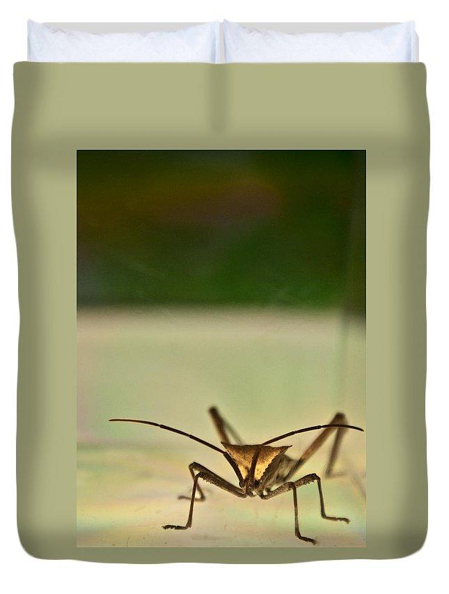 Hemiptera Duvet Cover featuring the photograph Martian Monster by Douglas Barnett