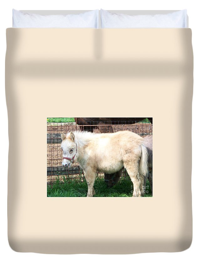 Miniature Horse Duvet Cover featuring the painting Miniature Horse by Eric Schiabor