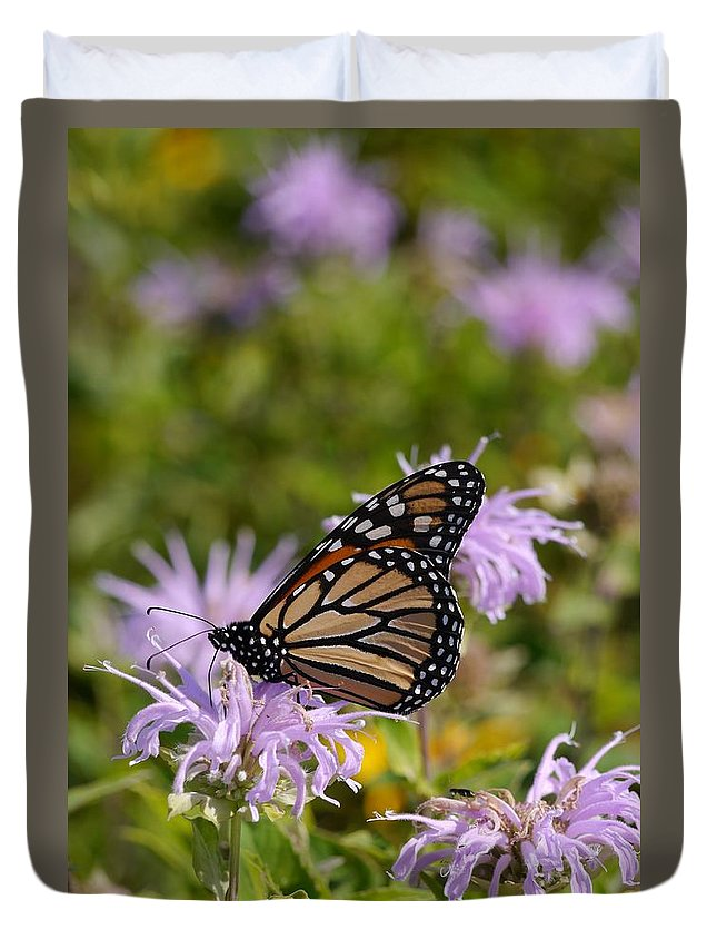 Tiwago Duvet Cover featuring the photograph Monarch by Photography by Tiwago