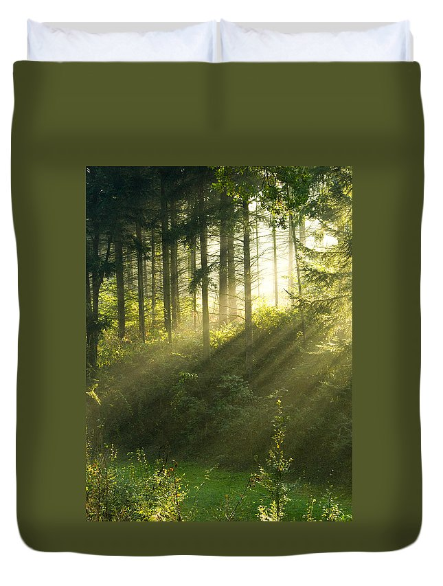 Light Duvet Cover featuring the photograph Morning Light Iv by Daniel Csoka