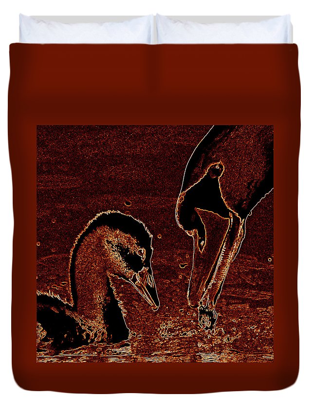 Swan Duvet Cover featuring the photograph Mother Swan And Cygnet by James Hill