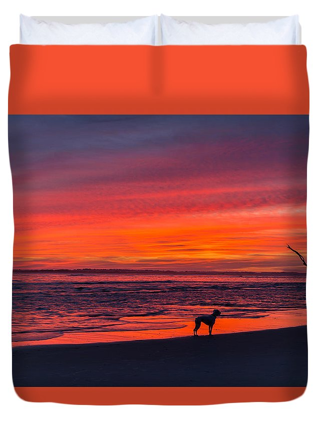 Sunset Duvet Cover featuring the photograph Nature by RC Pics