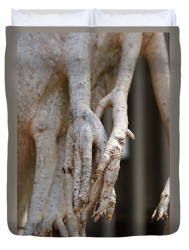 Praying Hands Duvet Cover featuring the photograph Nature by Shelley Jones