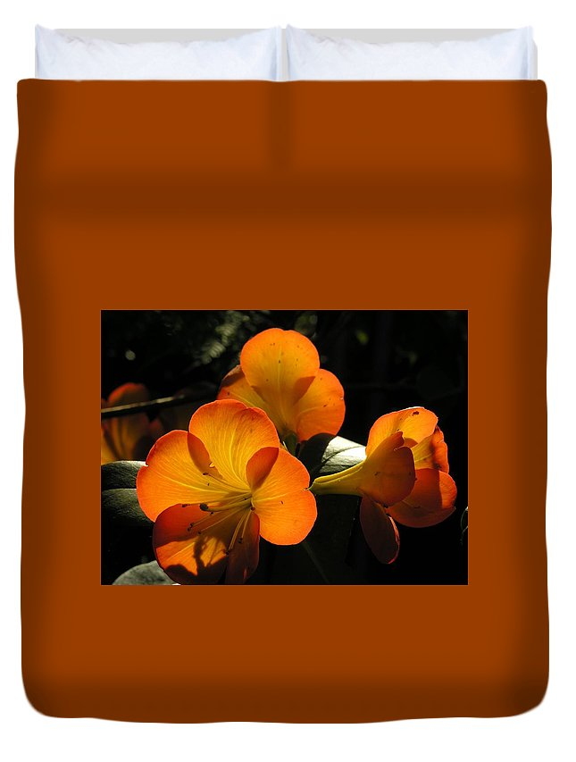 Flower Duvet Cover featuring the photograph Translucent by Karen Dickinson