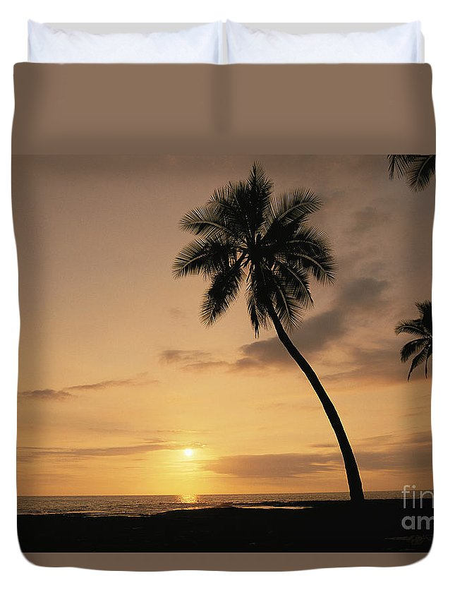 Afternoon Duvet Cover featuring the photograph Palm At Sunset by Greg Vaughn - Printscapes