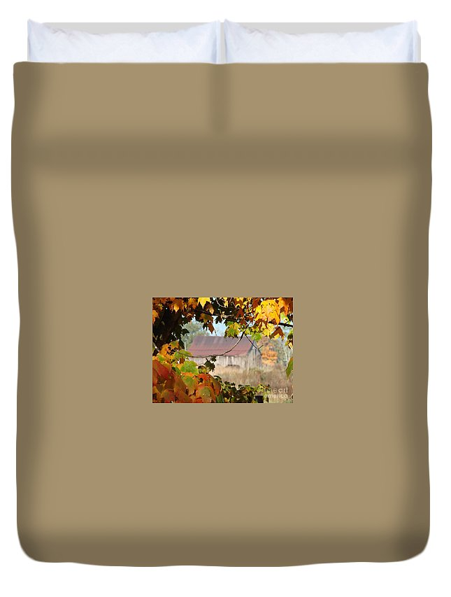 Barn Duvet Cover featuring the photograph Peeking by Annelize Van der Grient