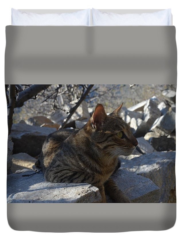 Himalayas Duvet Cover featuring the photograph Phoelix by Debrah Huber