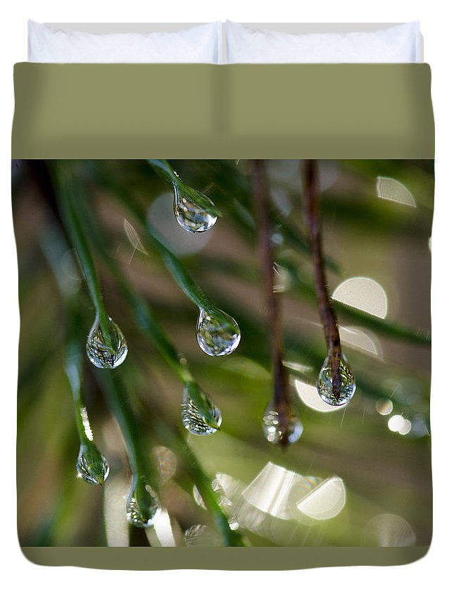 Extreme Art Duvet Cover featuring the photograph Pine Drops by Eric Abernethy