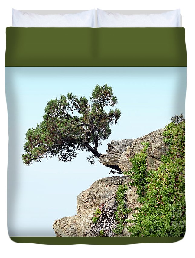 Pine-tree Duvet Cover featuring the photograph Pine Tree On A Rock by Goce Risteski