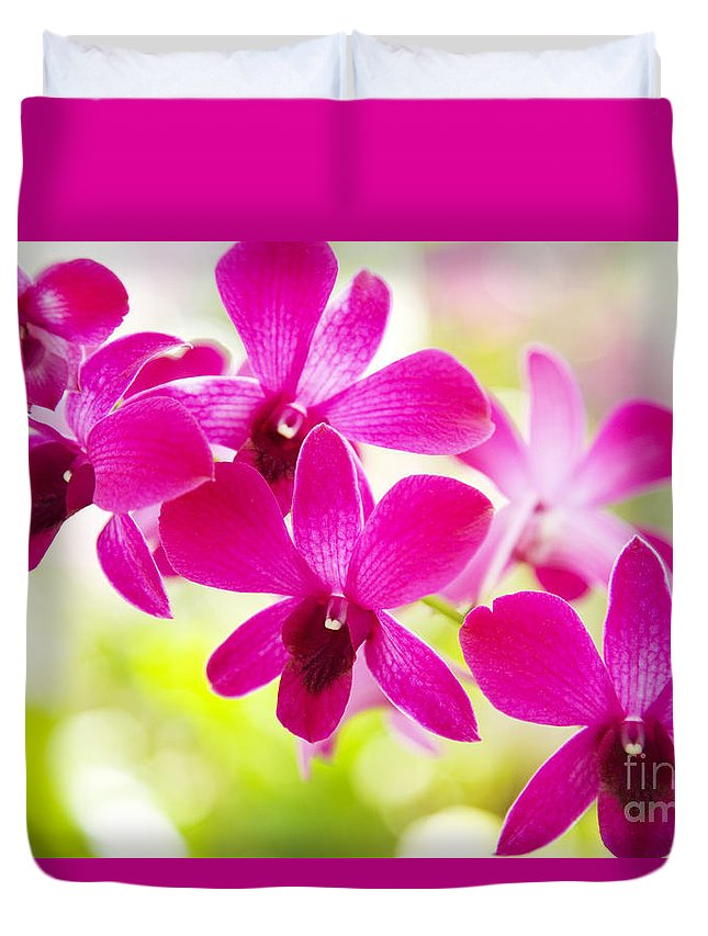 Afternoon Duvet Cover featuring the photograph Pink Orchid Lei by Dana Edmunds - Printscapes