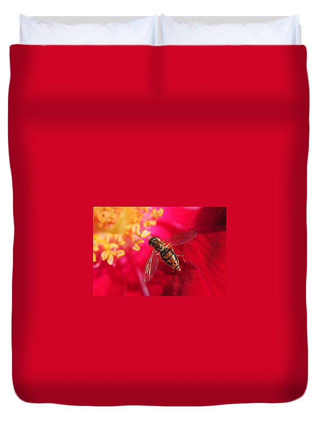 Bee Duvet Cover featuring the photograph Pollen Feast by Frozen in Time Fine Art Photography