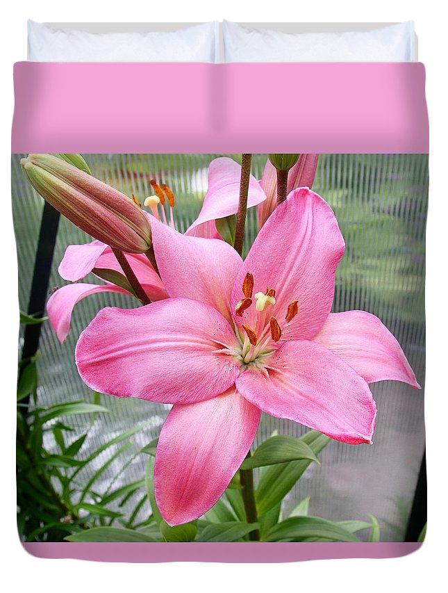 Exotic Lily Duvet Cover featuring the photograph Pretty In Pink by Kevin F Cook