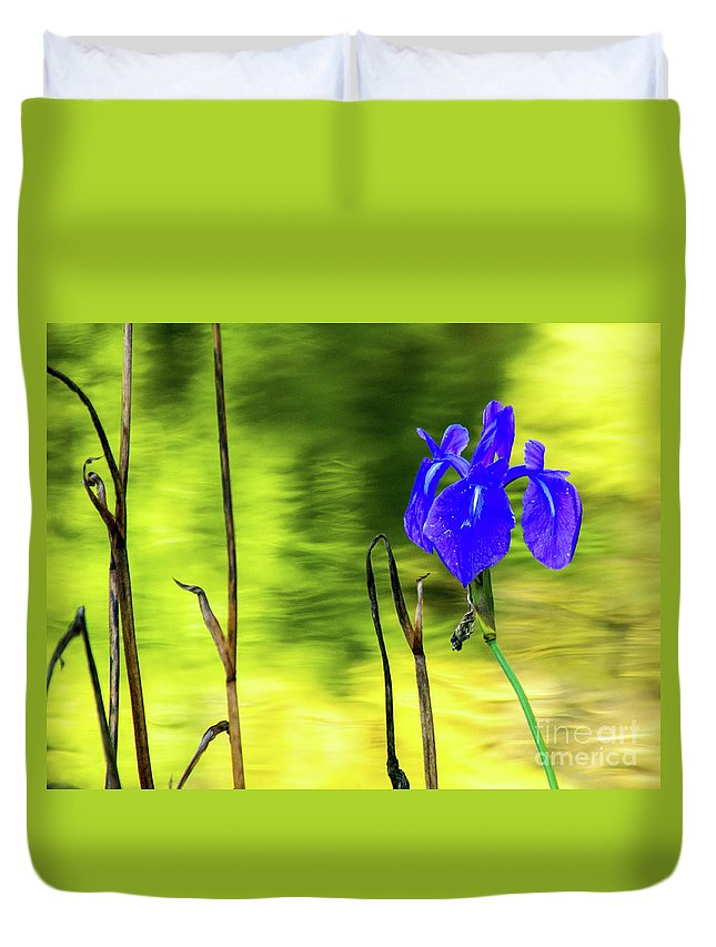 Tinas Captured Moments Duvet Cover featuring the photograph Purple Iris by Tina Hailey